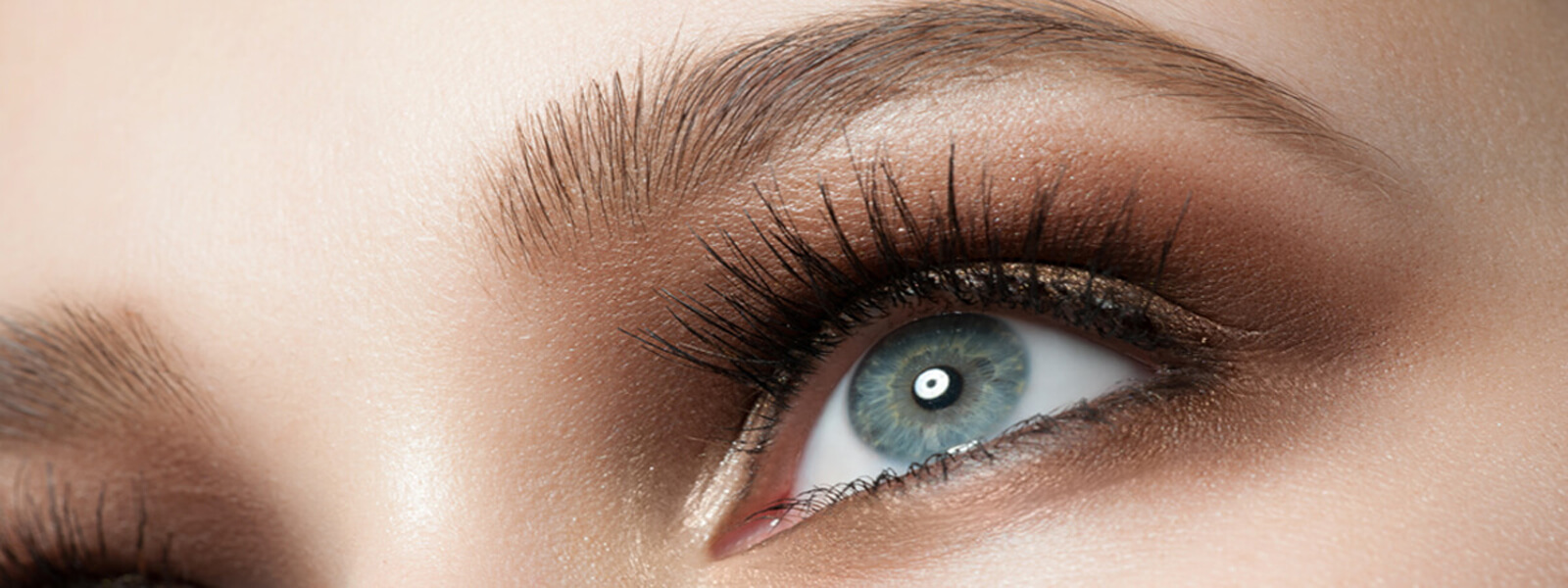 LBT Lash and brow slider